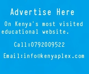 Advertise on Kenyaplex