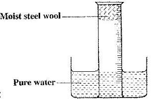 a measuring cylinder fitted with moist steel wool was morphological diagram steel wool diagram #8