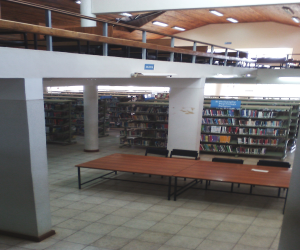 496_puea-inside-the-library.jpg